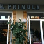 Photo of Hotel Primula