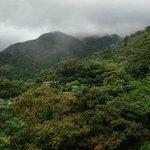 View of El Yunque National Park