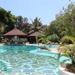 La piscina del Lily