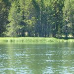 Canoe/kayak down Des Chutes River is scenic and peaceful