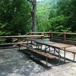 Buckhorn bench