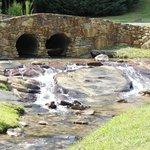 Cedar Falls Resort