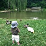 Visitors of all ages enjoy the arboretum.