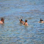 Snorkeling with Ron at Shark's Cove