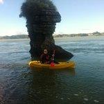 Raglan Harbour Kayak tour