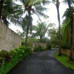 Stone walls, coconut trees, driving up to Karma Spa