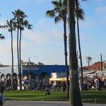 The hub of Venice Beach