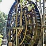 The 36 feet wheel