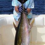 Valerie's 80lb Yellow Fin Tuna
