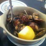 Clams cooked with garlic and coriander
