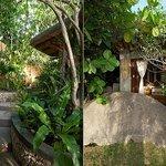 Villa 5: Entrance & Garden