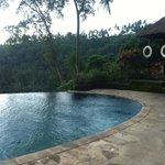 borderless pool