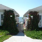 4 best cottages in South Haven