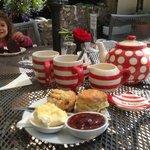Best cream tea in Devon plus chocolate cake the size of small child