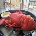 Lobster on the deck!