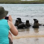 Wildlife Encounters at Floreana Lodge