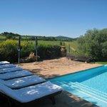 Pool and vineyard