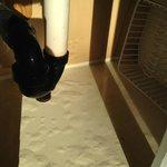 Wasserablauf in der Küche. Belag innen ist schon ganz aufgequollen da Rohr nicht mehr ganz dicht