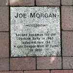 "Joe Morgan ""tile"""