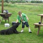 Jasper the dog