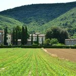 Classic Tuscan Countryside Setting