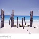 Pt Willy Beach-800m walk
