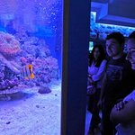 Aquarium Sibenik