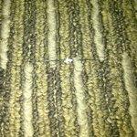Needle in carpet