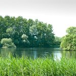 Lackford Lakes, Mill Deep