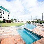 Magnuson Hotel Alexandria Airport Pool