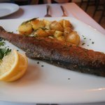 Grill trout