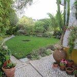top garden view