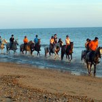 Horseriding in the Evening