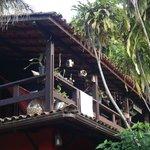 La galería-terraza