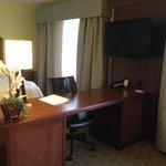 Hampton Inn & Suites Dallas-Arlington-South Foto