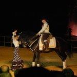 El arte de andalucia a caballo de Carmelo Cuevas