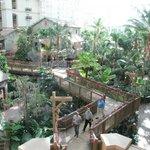View of atrium