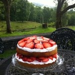 Wimbledon time! Cake with a view!