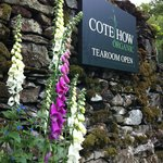 Cote How Organic Tea Room