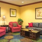 Holiday Inn Express Tampa Fairgrounds