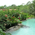 beautiful grounds and pools