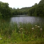 2nd lake from Nailsworth end