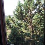 Vista da finestra con zanzariere