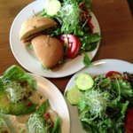 top: roasted chicken sandwich & side salad; left: whodamame on butter lettuce & side salad