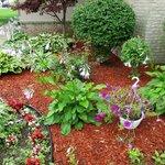 Nice plantings outside