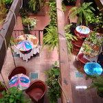 Terraza - Restaurant