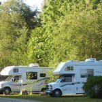 Wide, grassy and sunny RV sites.
