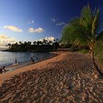 The beautiful beach just before sunset - tunliweb.no