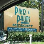 Pines and Palms Resort Photo