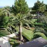 Gardens at Castillo